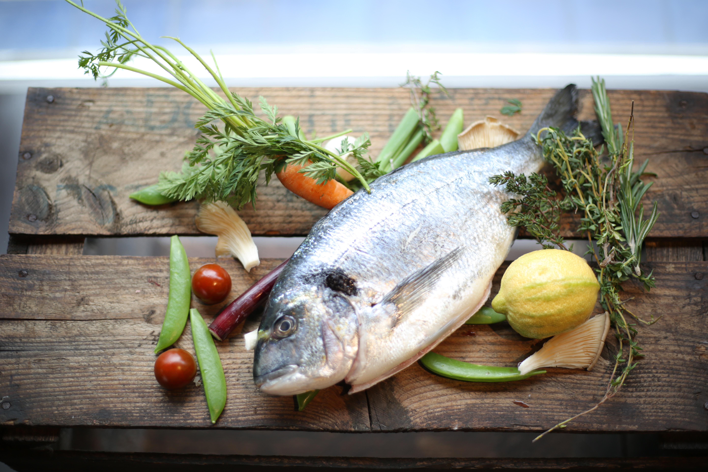 Friedrich-Kulinarisch-Homepage2